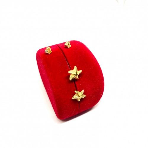 Altın 14 Ayar Deniz Yıldızı Küpe - TK0053